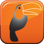 Vocalyze logo-Gray parrot with orange beak and face on orange background